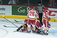 REGINA, SK - MAY 22: Evan Fitzpatrick #31 of Acadie-Bathurst Titan protects the puck after a collision with Hamilton Bulldogs at the Brandt Centre on May 22, 2018 in Regina, Canada. (Photo by Marissa Baecker/CHL Images)