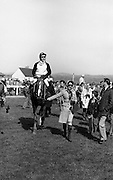"Racing At Punchestown.     K22..1976..28.04.1976..04.28.1976..28th April 1976..The John Jameson Cup race was run today at Punchestown. The sponsor of the race are Irish Distillers Ltd. The race an extended handicap novice steeplechase is for horses four years old and upwards that have not won a steeplechase on or before 1st Sept.,75..The race was won by ""No Hill"" owned by Mrs J.B.O'Callaghan,ridden by Mr T.M.Walsh and trained by Mr R Walsh...Image shows ""No Hill"" under jockey T.M.Walsh being led to the winners' enclosure."