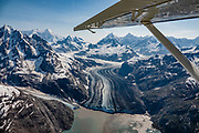 """Aerial view where Gilman Glacier meets the massive Johns Hopkins Glacier in Johns Hopkins Inlet, in the West Arm of Glacier Bay National Park, Alaska, USA. Flightseeing from Skagway or Haines is a spectacular way to see Glacier Bay. We were bedazzled by Mountain Flying Service's 1.3-hour West Arm tour from Skagway. Glacier Bay is honored by UNESCO as part of a huge Biosphere Reserve and World Heritage site shared between Canada and the United States. In 1750-80, Glacier Bay was totally covered by ice, which has since radically melted away. In 1794, Captain George Vancover found Icy Strait on the Gulf of Alaska choked with ice, and all but a 3-mile indentation of Glacier Bay was filled by a huge tongue of the Grand Pacific Glacier, 4000 feet deep and 20 miles wide. By 1879, naturalist John Muir reported that the ice had retreated 48 miles up the bay. In 1890, """"Glacier Bay"""" was named by Captain Beardslee of the U.S. Navy. Over the last 200 years, melting glaciers have exposed 65 miles of ocean. As of 2019, glaciers cover only 27% of the Park area. Since the mid 1900s, Alaska has warmed 3 degrees Fahrenheit and its winters have warmed nearly 6 degrees. Human-caused climate change induced by emissions of greenhouse gases continues to accelerate warming at an unprecedented rate. Climate change is having disproportionate effects in the Arctic, which is heating up twice as fast as the rest of Earth."""