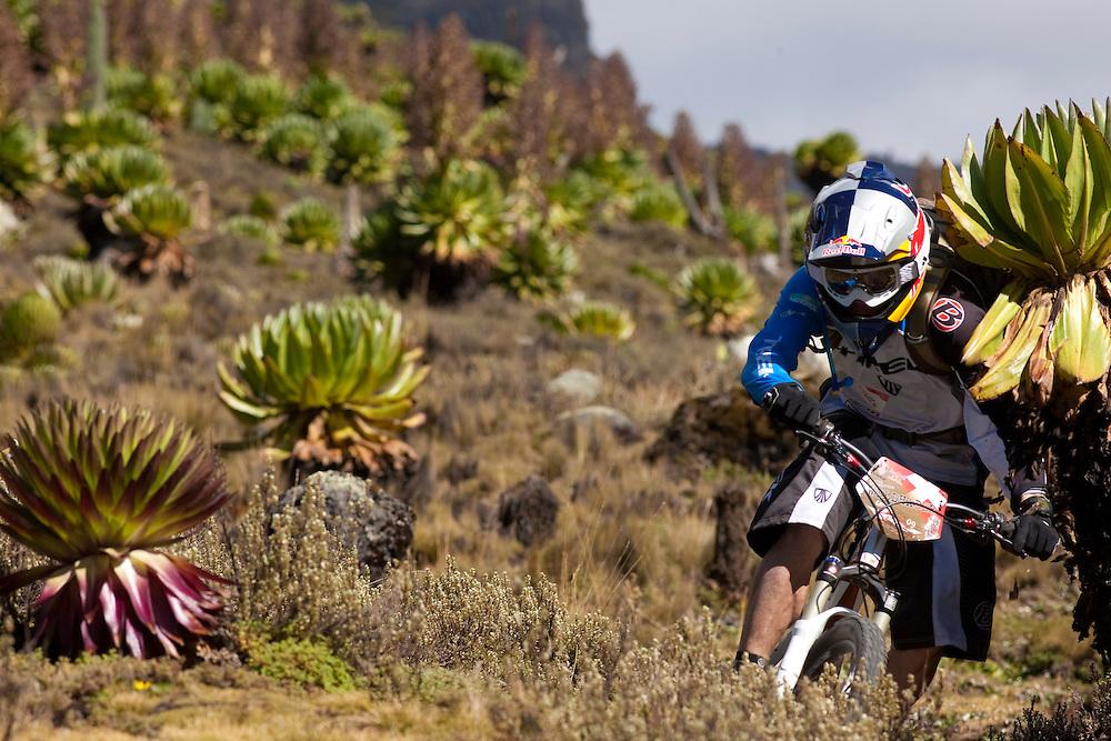 Location: Mont Kenya (Kenya) Urge Kenya 09/ The ultimate Mountain Bike gravity adventure at Mont-Kenya Athlete: Rene Wildhaber training on the race track between between Old Moses camp (altitude 3300 meters) and Shipton Camps (altitude 4200 meters)