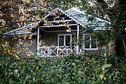 Palampur. India: One of the cottages, surrounded by tea bushes. The Country Cotttages, in the Chandpur Tea Estate, are simple cottages in the midst of a working tea garden at the foot of the Himalayas (Photo: Ann Summa).