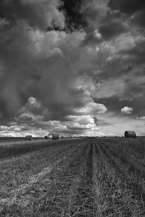 Early spring in Alberta's Prairies