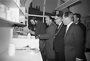 Opening of Kilkenny Design Workshop. G.J. Scarfe demonstrates pottery modelling to Dr. P.J. Hillery, Minister for Industry and Commerce.<br /> 15.11.1965