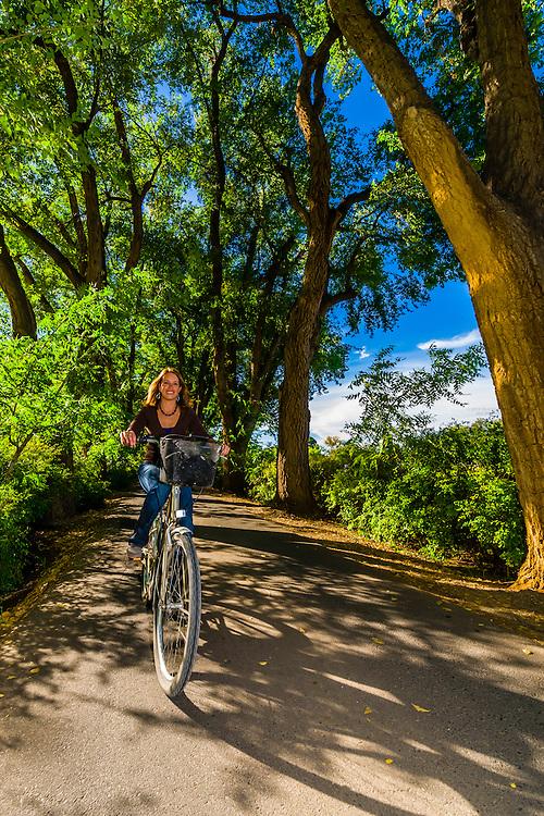 Woman bicycling down a verdant tree lined road, Los Poblanos Historic Inn & Organic Farm, Los Ranchos de Albuquerque, Albuquerque, New Mexico USA