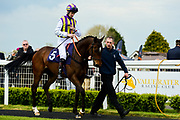 Tinto ridden by Robert Havlin and trained by Amanda Perrett in the Value Rater Racing Club Is Free Handicap race.  - Mandatory by-line: Ryan Hiscott/JMP - 01/05/2019 - HORSE RACING - Bath Racecourse - Bath, England - Wednesday 1 May 2019 Race Meeting