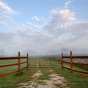 Cotton field and gate in Cane River, LA. Photo by Lori Waselchuk