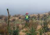 Forestry visit Barony Campus