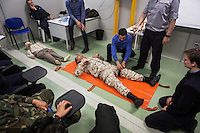 "VALLETTA, MALTA - 8 FEBRUARY 2017: Two officials of the Libyan Navy simulate a first-aid technique during a first-aid course held in a container in the hangar of the San Giorgio, an amphibious transport dock of the Italian Navy, in Valetta, Malta, on Febuary 8th 2017.<br /> <br /> As a consequence of the April 2015 Libya migrant shipwrecks, the EU launched a military operation known as European Union Naval Force Mediterranean (EUNAVFOR Med), also known as Operation Sophia, with the aim of neutralising established refugee smuggling routes in the Mediterranean. The aim of this new operation launched by Europe is to undertake systematic efforts to identify, capture and dispose of vessels as well as enabling assets used or suspected of being used by migrant smugglers or traffickers. On 20 June 2016, the Council of the European Union extended Operation Sophia's mandate reinforcing it by supporting the training of the Libyan coastguard.<br /> Thus far, following EUNAVFOR MED operation Sophia's activities, 101 suspected smugglers and traffickers have been apprehended and transferred to the Italian<br /> authorities and 380 boats were removed from the criminal organizations' availability. The Operation has saved 32.081 migrants, among whom 1888 children.<br /> <br /> On February 2nd 2017 Italian Premier Paolo Gentiloni and Prime Minister of the U.N. backed Libyan government Fayez al-Serraj signed a memorandum of understanding on cooperation to combat illegal migration, human trafficking and contraband and on reinforcing the border between Libya and Italy. The following day, as EU leaders meet in Malta for a summit, European Council President Donald Tusk said after talks with Serraj, that ""it is time to close the (migrant) route from Libya to Italy"" and that ""the EU has shown it is able to close the routes of irregular migration, as it has done in the eastern Mediterranean.""  Tusk said the Central Mediterranean route was ""not sustainable either for the EU or for Libya"", where he said trafficker"