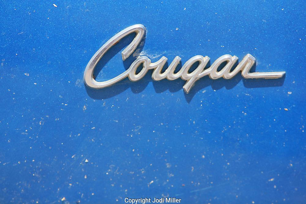 Couger blue