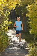 Jogger on Wooded Path in Park