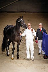 480 - Generaal<br /> KWPN Stallion Selection - 's Hertogenbosch 2014<br /> © Dirk Caremans