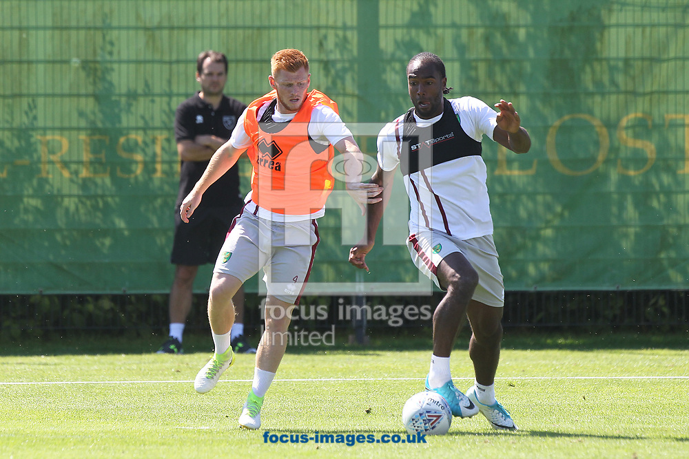 Norwich City Sporting Director Stuart Webber watches on as Harrison Reed of Norwich and Cameron Jerome of Norwich battle for the ball during the Norwich City Pre-Season Training session at Hotel Klosterpforte, Harsewinkel, Germany<br /> Picture by Paul Chesterton/Focus Images Ltd +44 7904 640267<br /> 18/07/2017