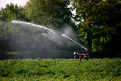 UK ENGLAND NORFOLK WORXHAM 8AUG06 - Irrigation by water dispenser and piping near Wroxham Barns in the Norfolk Broads...jre/Photo by Jiri Rezac..© Jiri Rezac 2006..Contact: +44 (0) 7050 110 417.Mobile:  +44 (0) 7801 337 683.Office:  +44 (0) 20 8968 9635..Email:   jiri@jirirezac.com.Web:    www.jirirezac.com..© All images Jiri Rezac 2006 - All rights reserved.