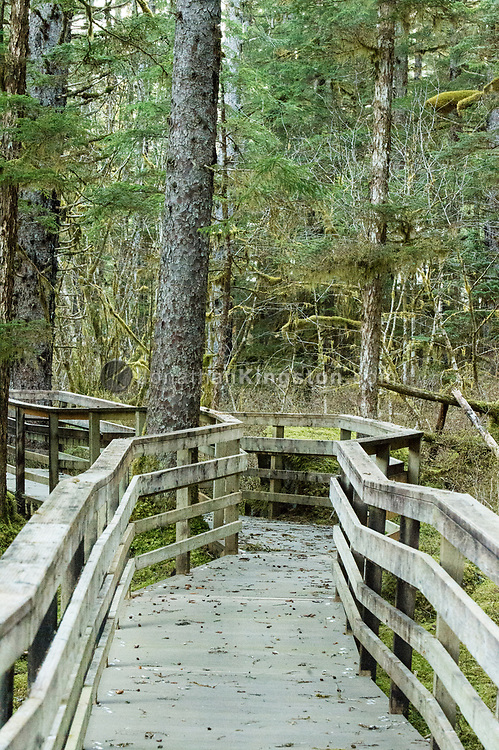 Boardwalk on the Forest Trail in Bartlett Cove, Glacier Bay Park.