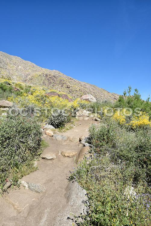 Tahquitz Canyon Trail Head