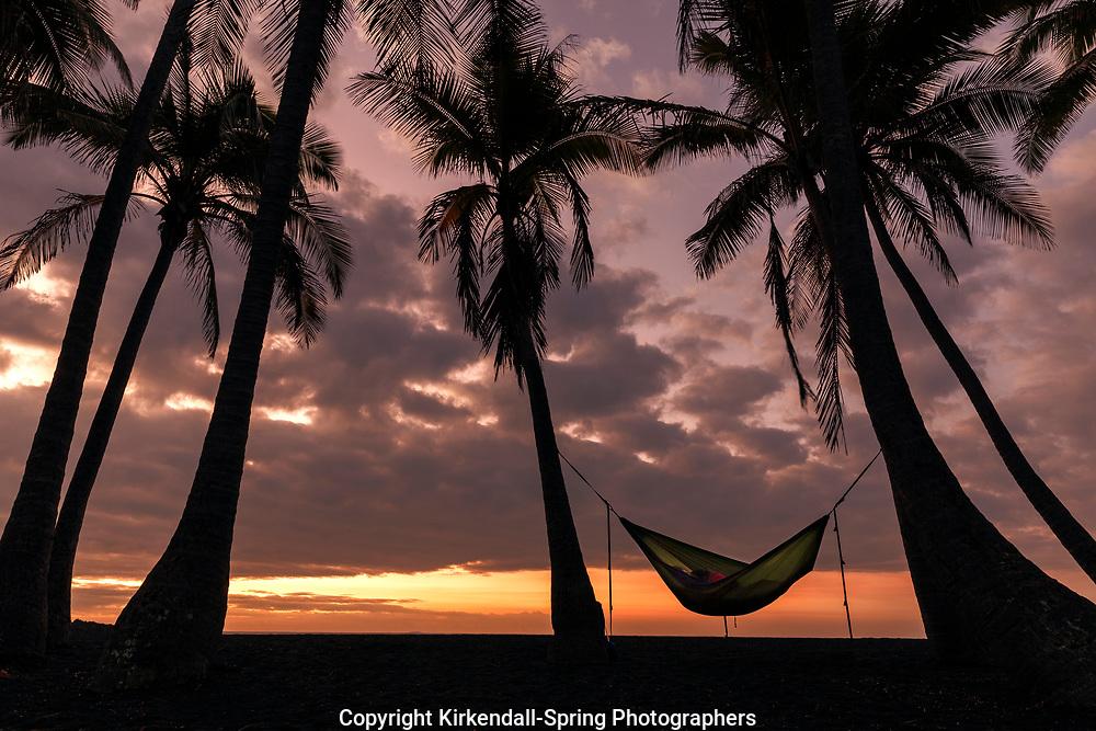 HI00231-00...HAWAI'I - Sleeping in a hammock at sunrise at Punalu'u Beach Park on the Island of Hawai'i.