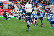Sharky welcomes the teams during the Gallagher Premiership Rugby match between Sale Sharks and Worcester Warriors at the AJ Bell Stadium, Eccles, United Kingdom on 9 September 2018.