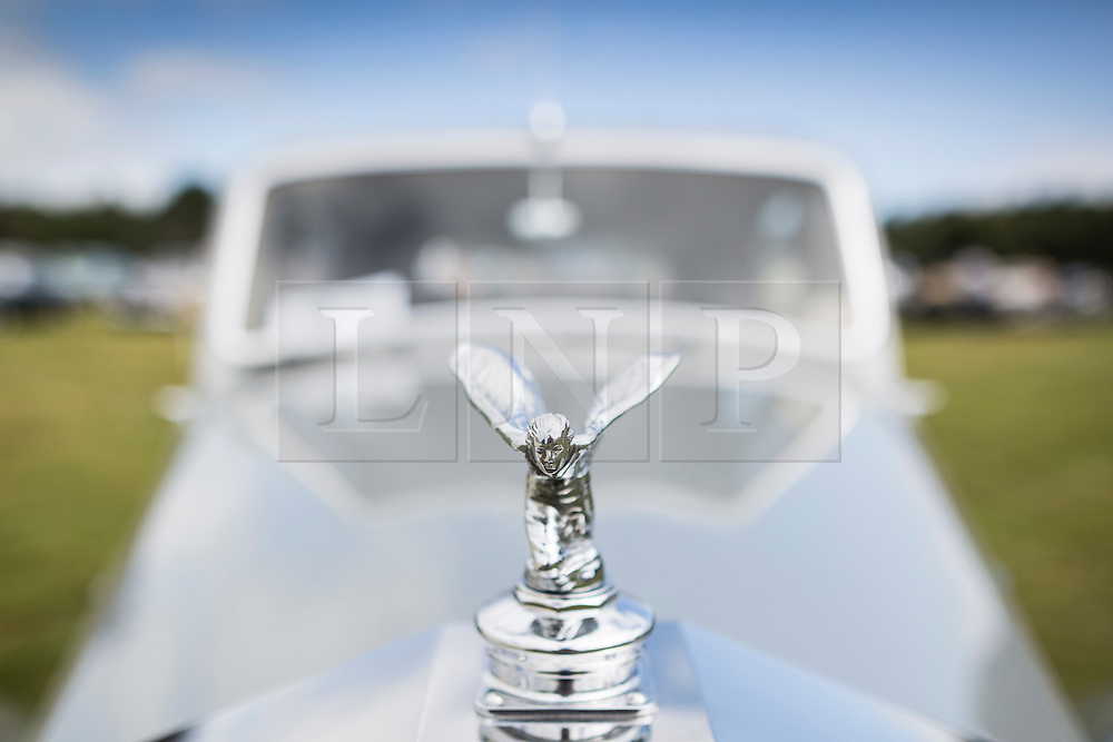 © Licensed to London News Pictures. 07/08/2016. Leeds UK. Picture shows a 1954 Rolls Royce Silver Dawn at the 37th Rolls Royce North rally that has taken place this weekend in the ground's of Harewood House in Yorkshire. The event bring's together some of the UK's most prized motor cars & their proud owners. Photo credit: Andrew McCaren/LNP