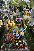 Wiezowski/Ledochowicz family. All Saints Day at cemetery in Lodz, Poland.