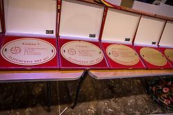 Prizes<br /> BWP hengstenkeuring 2019<br /> 3de phase - Sentower Park - Opglabeek 2019<br /> © Hippo Foto - Dirk Caremans