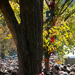 Washington, DC, October 30, 2010 - Jon Stewert and Steven Colbert host the Rally To Restore Sanity and/or Fear.  Tens of thousands of ralliers donned costumes and carried signs.  Many climbed trees,  porta-potties, or anything to get above the crowds.