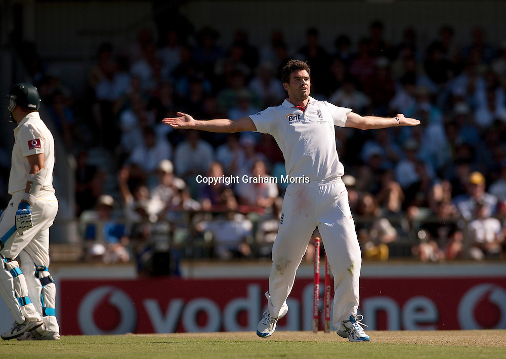 Bowler James Anderson celebrates the wicket of Brad Haddin during the third Ashes test match between Australia and England at the WACA (West Australian Cricket Association) ground in Perth, Australia. Photo: Graham Morris (Tel: +44(0)20 8969 4192 Email: sales@cricketpix.com) 16/12/10
