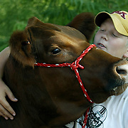 fair - des moines, aug. 17 -- A HUG BEFORE A BATH -- Kolby Berg, 14, from Osage, gives Amber, a hug before her bath Wednesday morning near the cattle barn at the Iowa State Fair.  Berg, who has been competing in the fair since age 11, showed his Red Angus yesterday where she won second in her class.  photo by david peterson