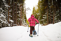Snowshoeing the Penstock Loop in Peter Lougheed Provincial Park in Kananaskis Country<br /> <br /> ©2012, Sean Phillips<br /> http://www.RiverwoodPhotography.com