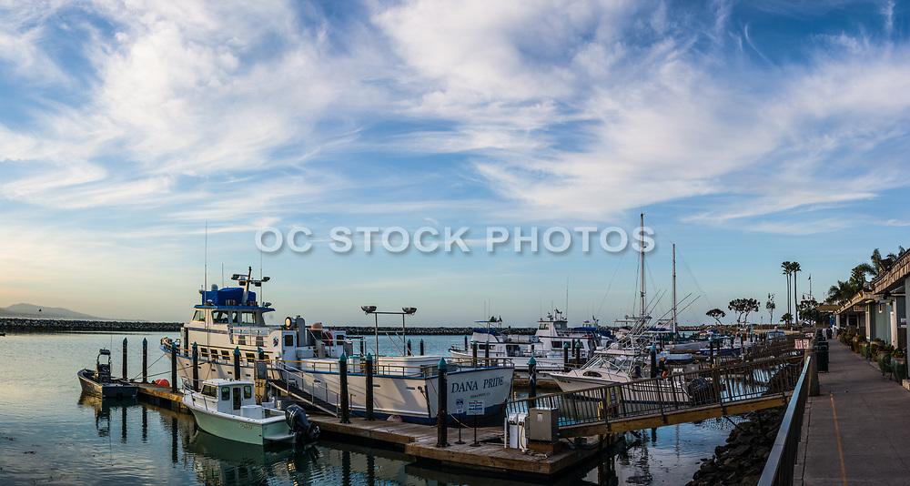 Dana Point Fishing Boats Docked in the Harbor