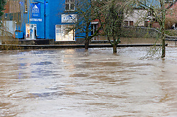 © Licensed to London News Pictures. 10/03/2020. Builth Wells, Powys, Wales, UK. The river Wye levels rose dramatically overnight after heavy rainfall in Mid Wales yesterday and last night. According to Natural Resources Wales website, the level reached a peak of 4.21 metres. The website also shows that an all time high level of 5.05 metres was reached at the Builth Wells gauge on 16th February 2020. Photo credit: Graham M. Lawrence/LNP
