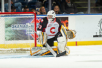 KELOWNA, BC - NOVEMBER 1: Affiliate player Jacob Herman #33 of the Prince George Cougars defends the net against the Kelowna Rockets at Prospera Place on November 1, 2019 in Kelowna, Canada. (Photo by Marissa Baecker/Shoot the Breeze)