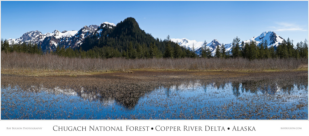 Composite panorama of reflection of Chugach Mountains in marsh in early spring in the Chugach National Forest in the Copper River Delta of Southcentral Alaska. Morning.