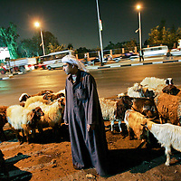 A shepherd keeps watch over his flock on a busy street in Cairo. Cairo is home to 15 million and often described as the center of the Arab world, an incubator of culture and ideas. But it is also a collection of villages, a ruralized metropolis where people live by their wits and devices, cut off from the authorities, the law and often each other. January 2007.