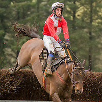 Action from the East Clare Harriers 2015 Killaloe point to point from the East Clare Harriers 2015 Killaloe point to point from the East Clare Harriers 2015 Killaloe point to point from the East Clare Harriers 2015 Killaloe point to point