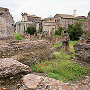 Tempio di Antonino and Faustina from the ruins of the Roman Forum, Rome, Italy