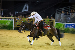Martin Muhlstatter, (AUT), Wimpys Little Buddy - Individual Final Comptetition - Alltech FEI World Equestrian Games™ 2014 - Normandy, France.<br /> © Hippo Foto Team - Leanjo De Koster<br /> 30-08-14