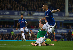 Richarlison of Everton scores his sides first goal - Mandatory by-line: Jack Phillips/JMP - 03/11/2018 - FOOTBALL - Goodison Park - Liverpool, England - Everton v Brighton and Hove Albion - English Premier League