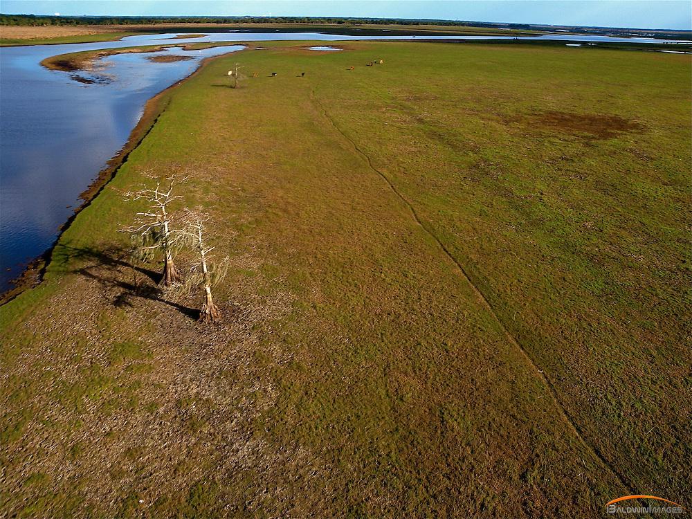 Aerial view of Florida savannah and St. John River