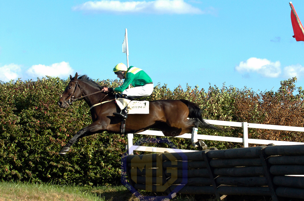 20 October 2007:  Jockey James Fahey takes Allimac over a water jump in the $50,000 Porsche International Gold Cup during the 70th running of the International Gold Cup Races on October 20, 2007 at the Great Meadow in The Plains, Va.  The race was won by See youattheevent (2) ridden by Robert Walsh with Shadyvalley (6) ridden by Russell Haynes and Woodmont (5) with Jeff Murphy aboard finishing 2nd and 3rd..