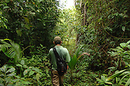 A cacao farmer hiking to his trees in the rainforest in southern Belize.