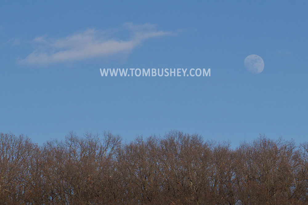 Cornwall, New York - The moon rises above trees on  on Feb. 11, 2014.