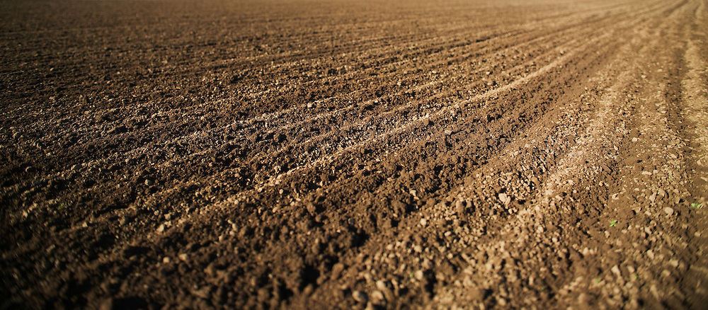 Ploughed Field, near Maitland in the Hunter Valley, NSW,Australia
