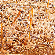 Traditional bamboo umbrella skeletons ready to be finished at Guangdexing Paper Umbrella Shop, Meinong Township, Kaohsiung County, Taiwan