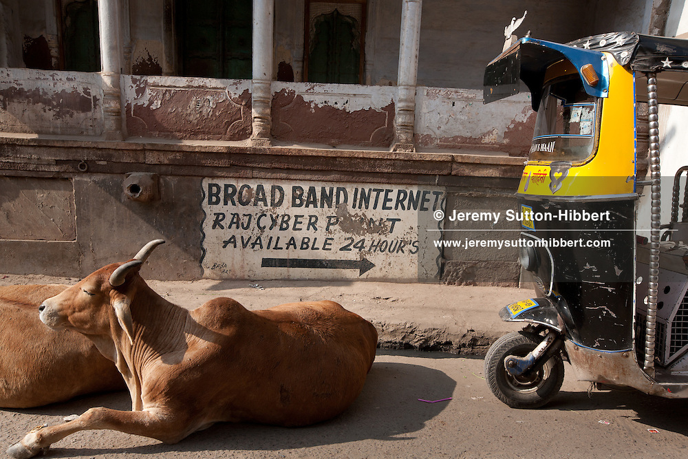 Sign advertising broadband internet access, beside cows and an auto-rickshaw, in Jodhpur, in Rajasthan, India, on 28th December 2011.