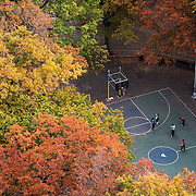 November 1, 2015 - New York, NY : People are seen from above, playing basketball amid the Autumn foliage, in Marcus Garvey Park in Harlem, on Sunday. <br />