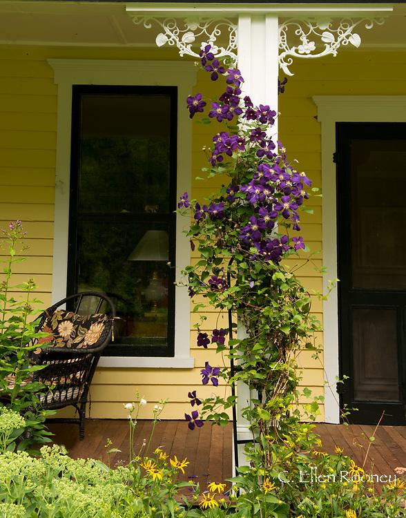 Diana Frangos' garden in Hauverville, New York, U.S.A.