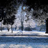 UCC Snow