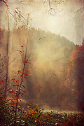Sunlight and morning fog near river Wupper in autumn. Texturized photograph<br />
