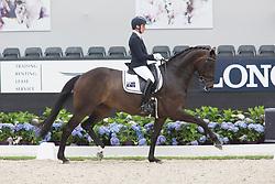 Tomkinson Maree, AUS, DMJ Donna Elena<br /> World Championship Young Dressage Horses <br /> Ermelo 2016<br /> © Hippo Foto - Leanjo De Koster<br /> 29/07/16