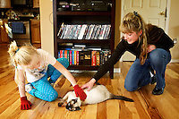 Brandy Fletcher and her daughter Brea, 7, play with their nine-month-old Siamese cat named Hachi at their Hayden home Monday. Fletcher discovered her cat had ate a 2-inch-long sewing needle that it passed through it system seemingly without injury.